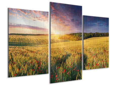 Metallic-Bild 3-teilig modern Ein Blumenfeld bei Sonnenaufgang
