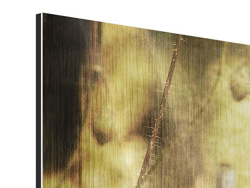 Metallic-Bild 3-teilig modern Der wilde Mohn