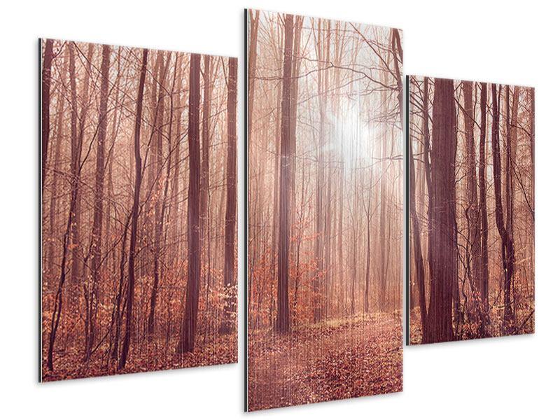 Metallic-Bild 3-teilig modern Sonnenuntergang im Herbstwald