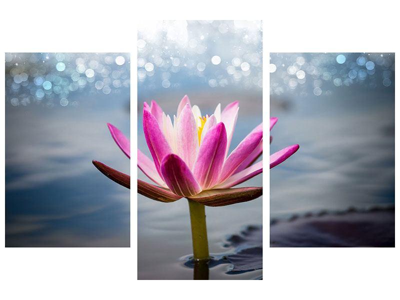 Metallic-Bild 3-teilig modern Lotus im Morgentau