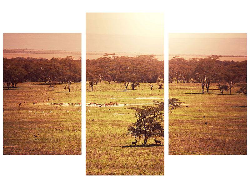 Metallic-Bild 3-teilig modern Malerisches Afrika