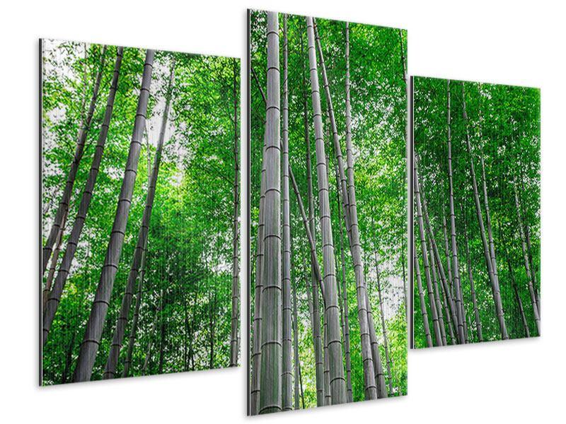 Metallic-Bild 3-teilig modern Bambuswald