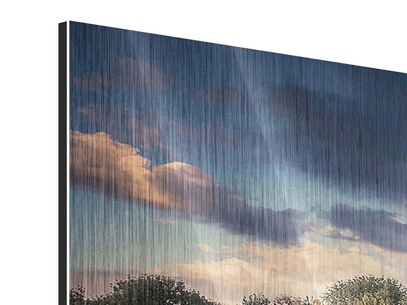 Metallic-Bild 4-teilig modern Die Wiesenmargerite am Fluss