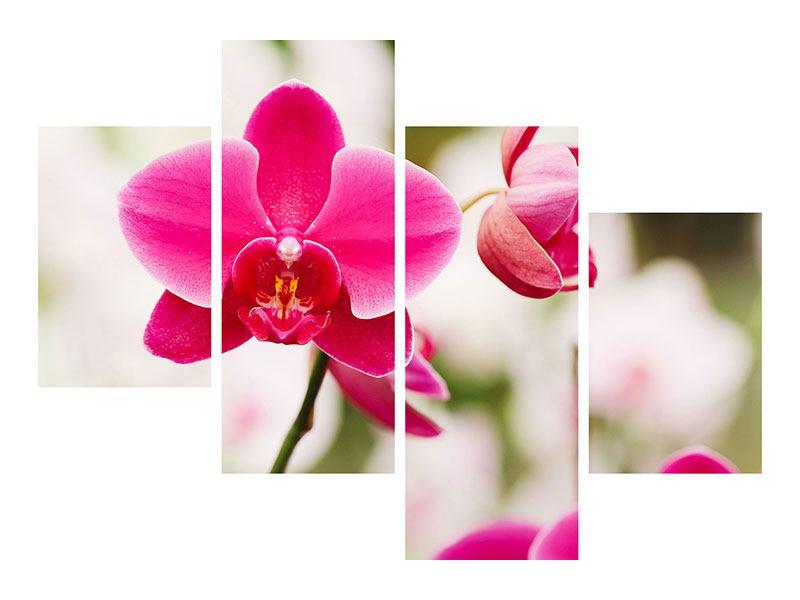Metallic-Bild 4-teilig modern Perspektivische Orchideen