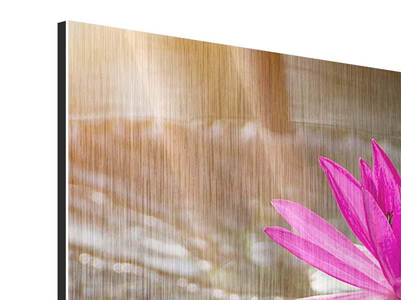 Metallic-Bild 4-teilig modern Seerosen im Morgentau