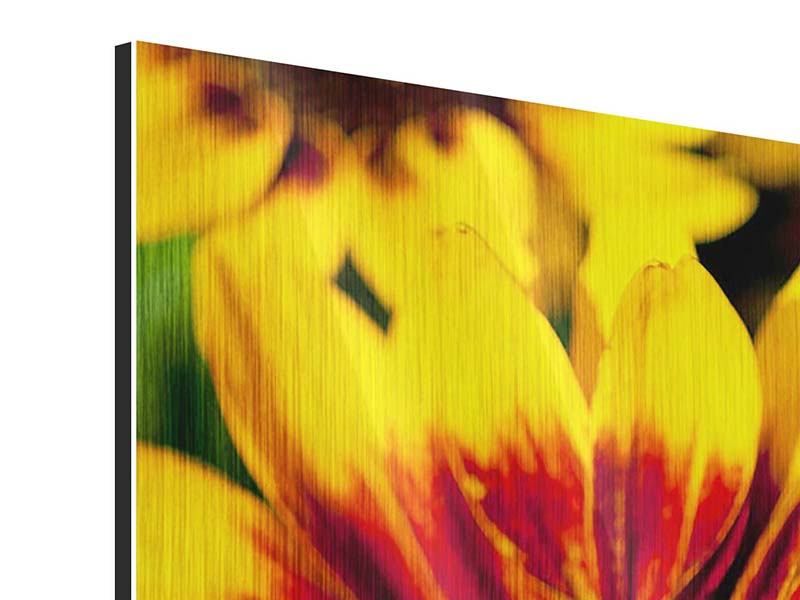 Metallic-Bild 4-teilig modern Reife Sonnenblumen