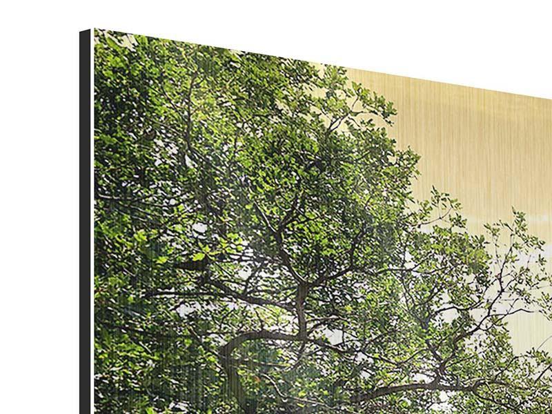 Metallic-Bild 4-teilig modern Am Ende des Waldes