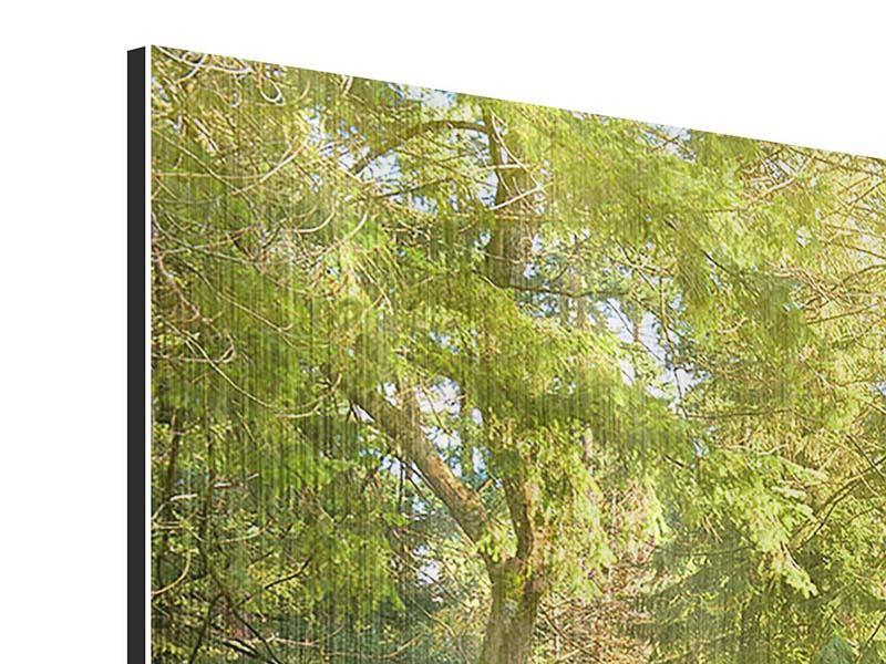 Metallic-Bild 4-teilig modern Im Park