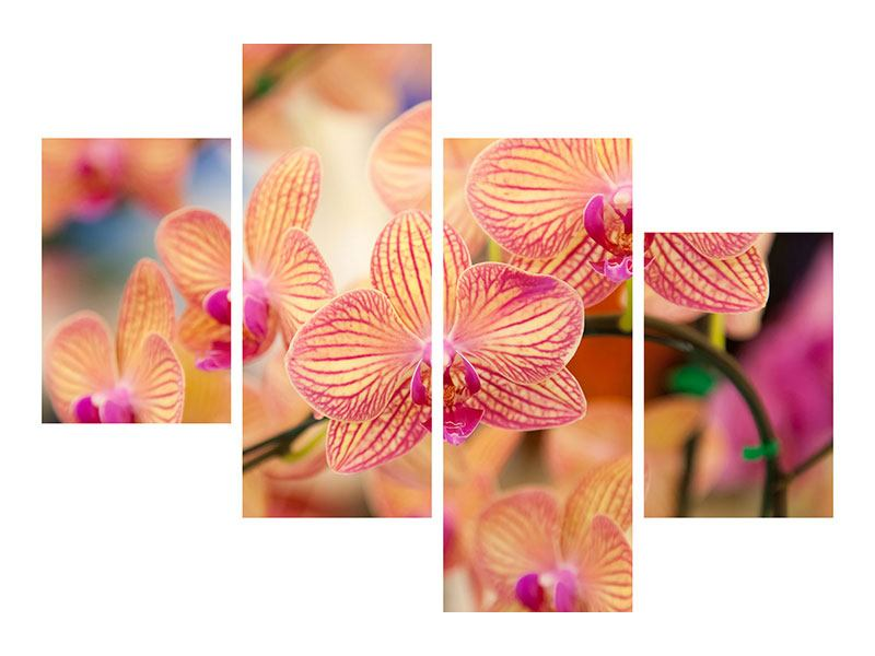 Metallic-Bild 4-teilig modern Exotische Orchideen