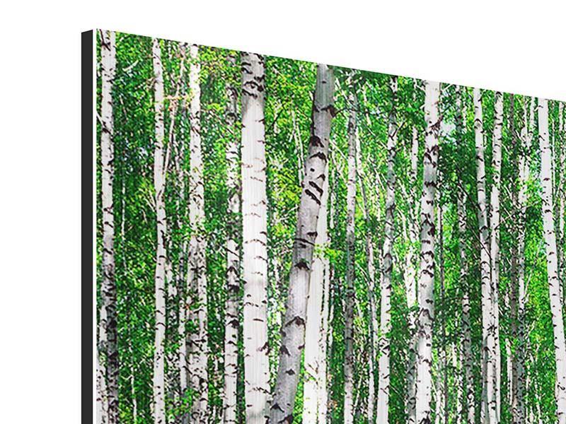Metallic-Bild 4-teilig modern Sommerlicher Birkenwald