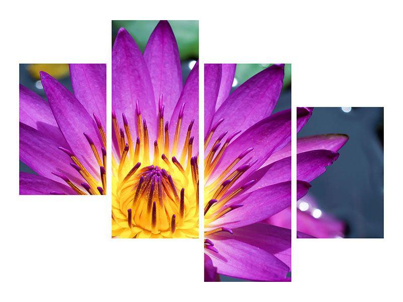 Metallic-Bild 4-teilig modern Makro Seerose in Lila