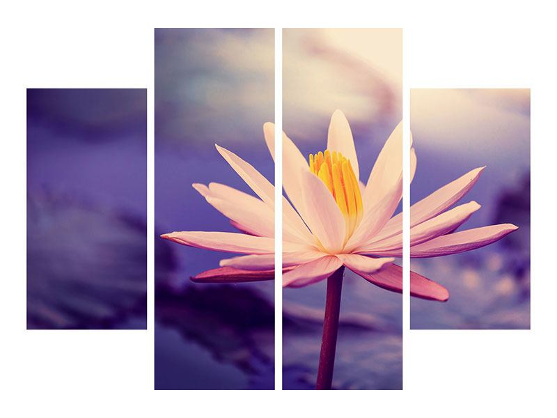 Metallic-Bild 4-teilig Lotus bei Sonnenuntergang