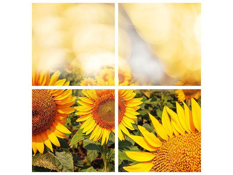 Metallic-Bild 4-teilig Das Licht der Sonnenblumen