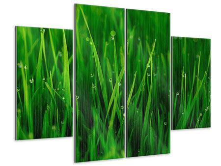 Metallic-Bild 4-teilig Gras mit Morgentau