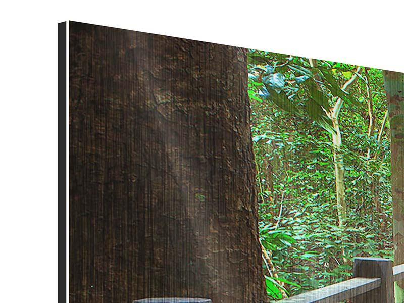 Metallic-Bild 4-teilig Die Brücke im Wald