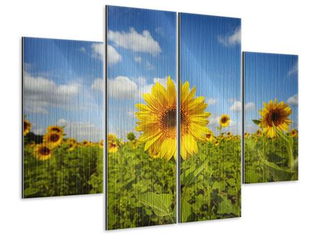 Metallic-Bild 4-teilig Sommer-Sonnenblumen