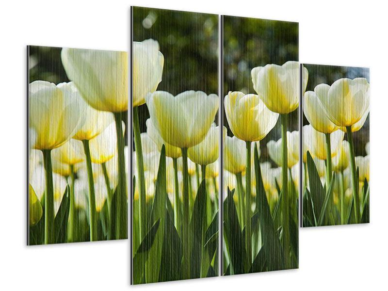 Metallic-Bild 4-teilig Tulpen bei Sonnenuntergang