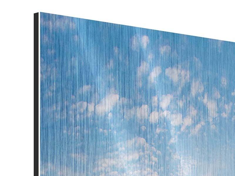 Metallic-Bild 4-teilig Das Gras