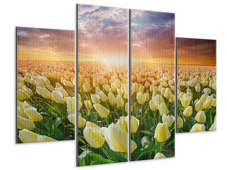 Metallic-Bild 4-teilig Sonnenaufgang bei den Tulpen