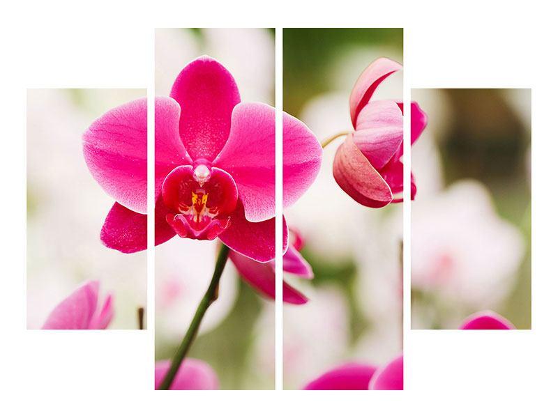 Metallic-Bild 4-teilig Perspektivische Orchideen