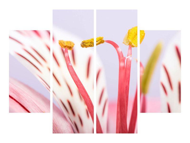 Metallic-Bild 4-teilig Close Up Die exotische Schönheit