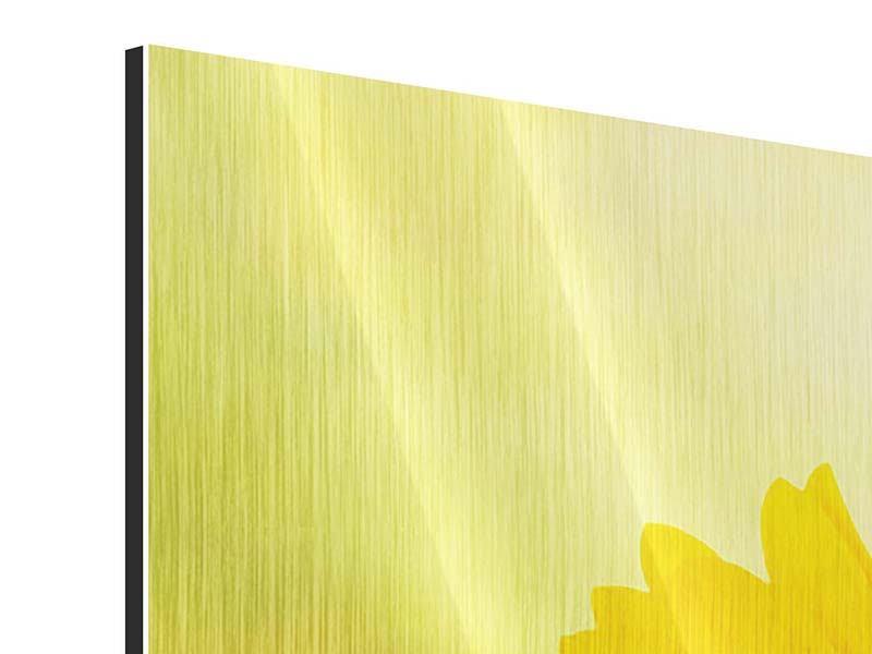Metallic-Bild 4-teilig Die Sonnenblume