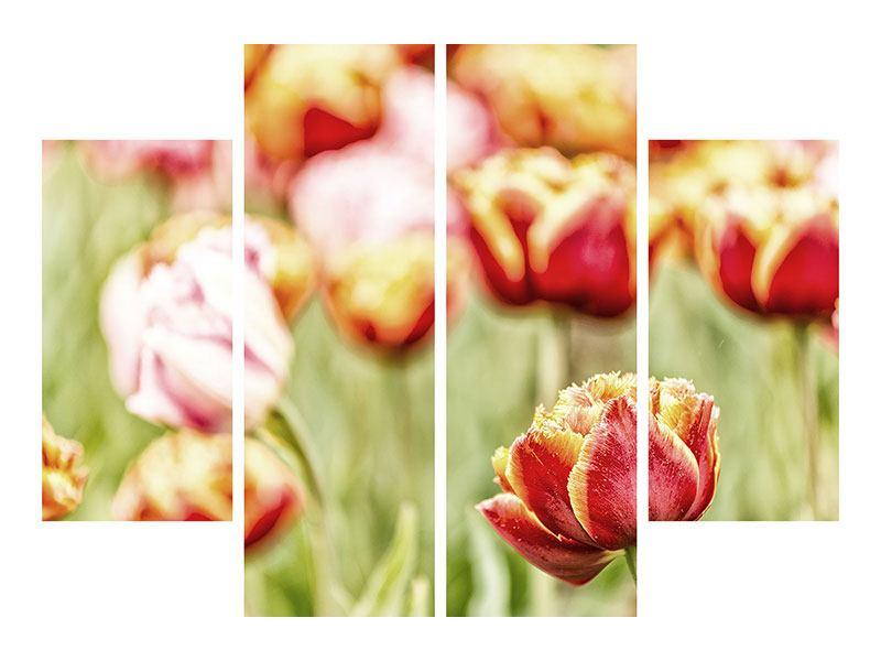 Metallic-Bild 4-teilig Die Schönheit der Tulpe