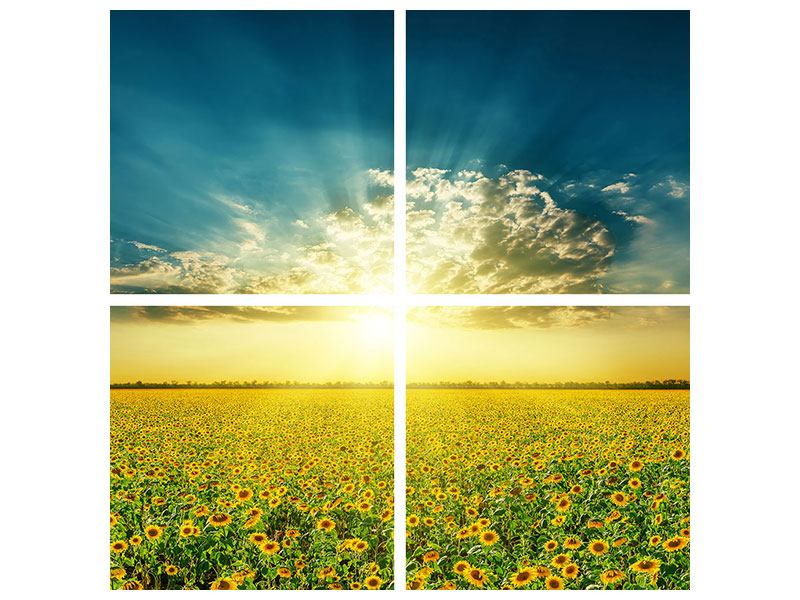 Metallic-Bild 4-teilig Sonnenblumen in der Abendsonne