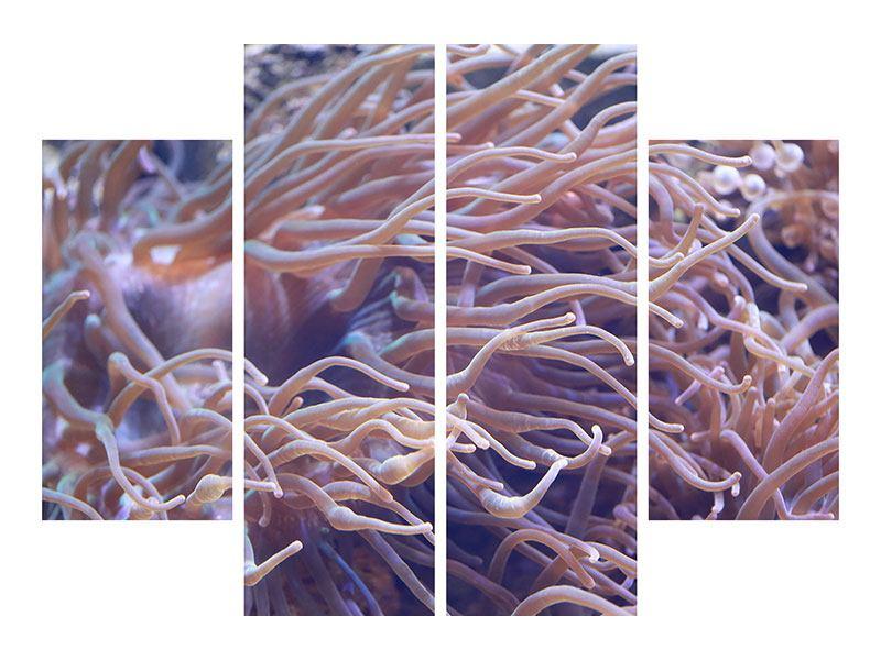 Metallic-Bild 4-teilig Korallenriff