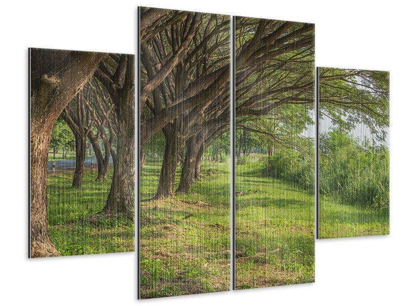 Metallic-Bild 4-teilig Alter Baumbestand