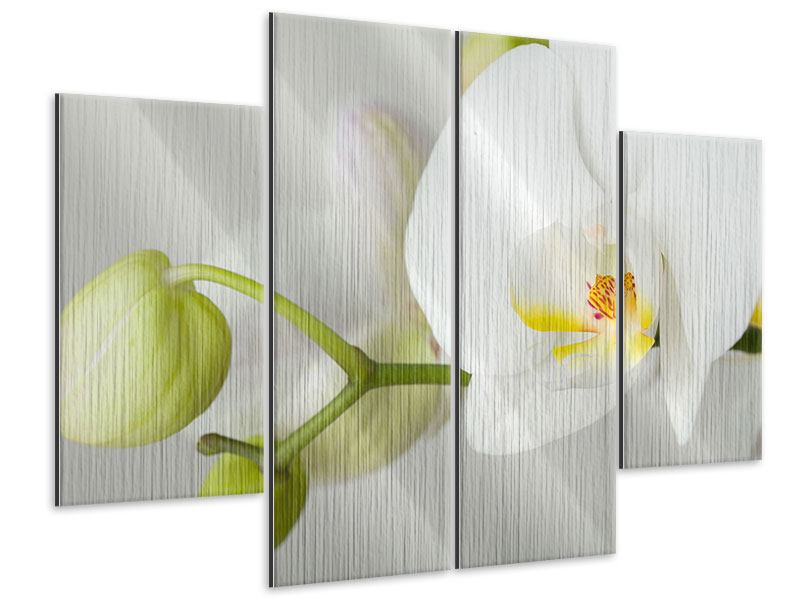 Metallic-Bild 4-teilig Riesenorchidee