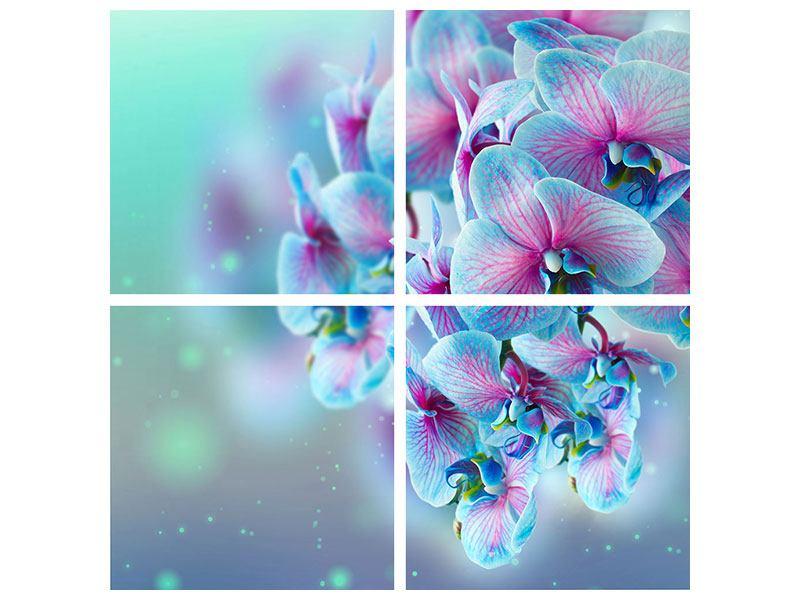 Metallic-Bild 4-teilig Farbige Orchideen