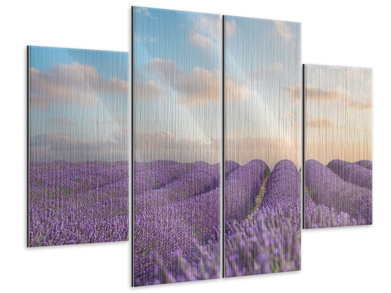 Metallic-Bild 4-teilig Das blühende Lavendelfeld