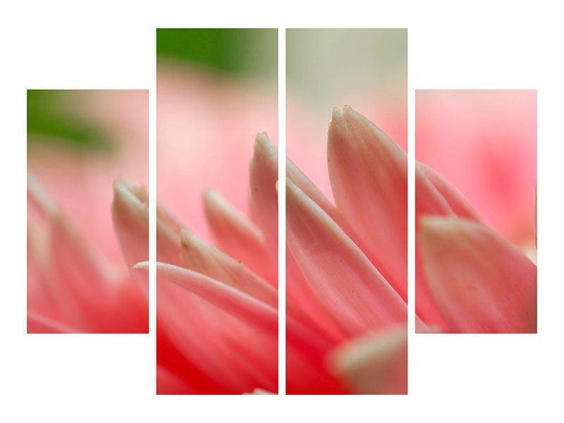Metallic-Bild 4-teilig Close Up einer Blüte
