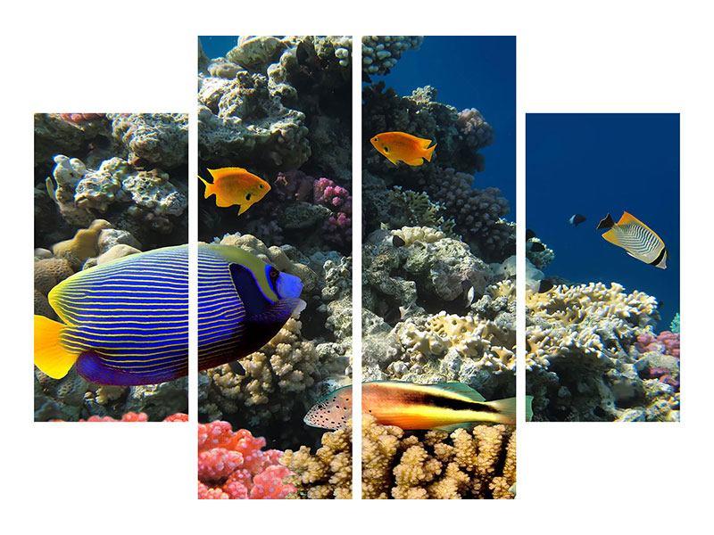 Metallic-Bild 4-teilig Das Aquarium