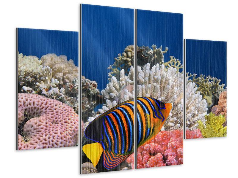 Metallic-Bild 4-teilig Mit den Fischen tauchen