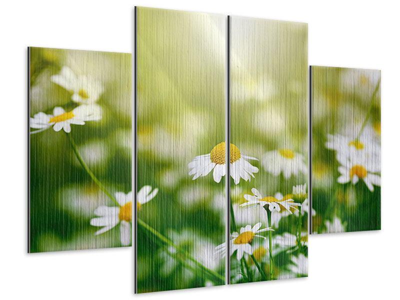 Metallic-Bild 4-teilig Die Gänseblümchen