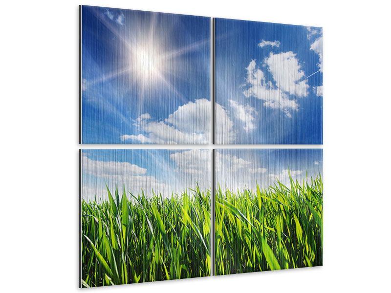 Metallic-Bild 4-teilig Frühlingsgras