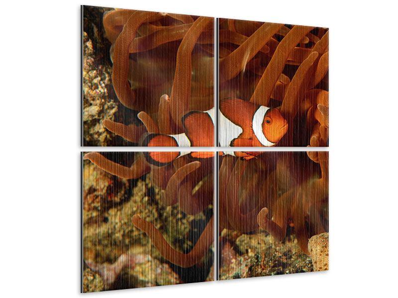 Metallic-Bild 4-teilig Nemo