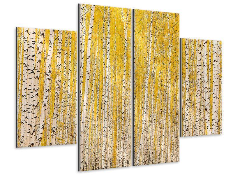 Metallic-Bild 4-teilig Der Birkenwald im Herbst