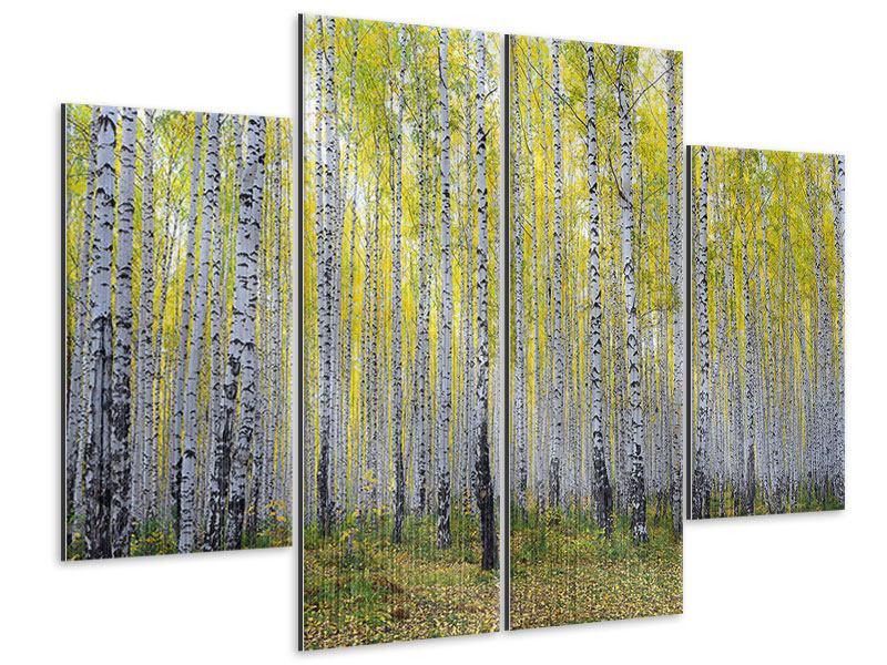 Metallic-Bild 4-teilig Herbstlicher Birkenwald