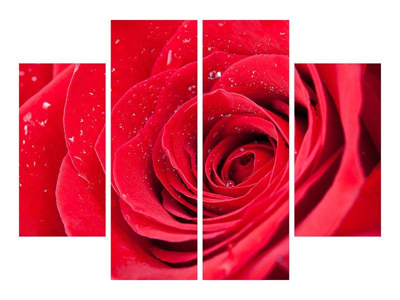 Metallic-Bild 4-teilig Rote Rose im Morgentau