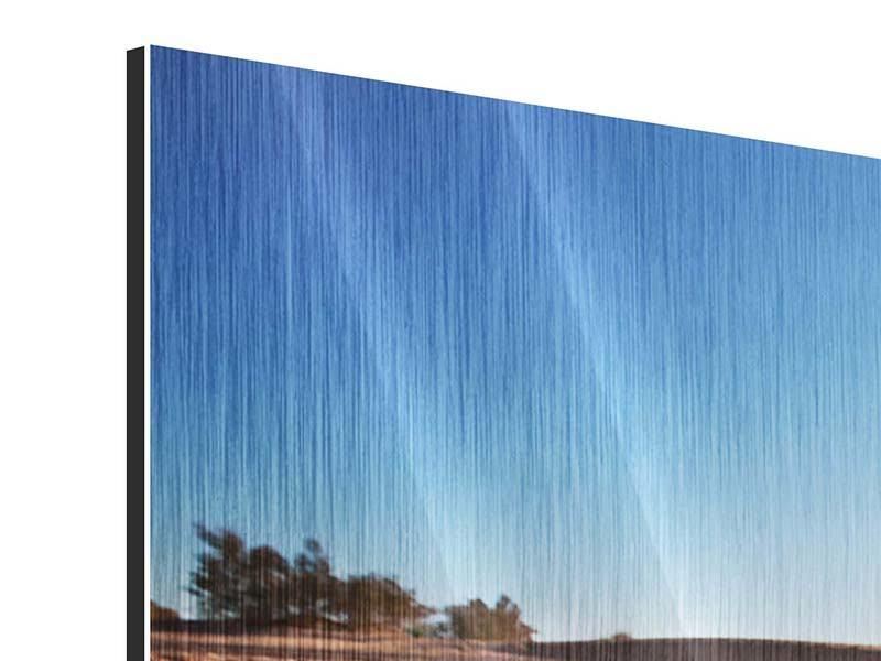 Metallic-Bild 4-teilig Dürre