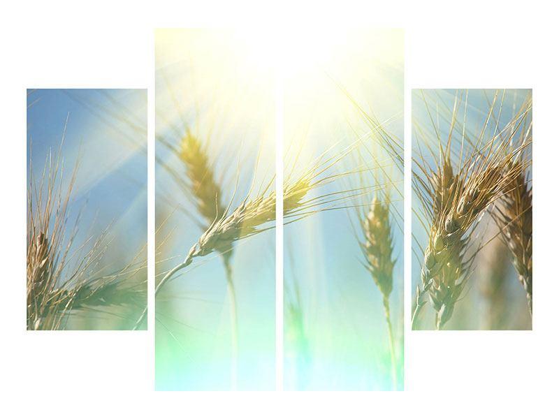 Metallic-Bild 4-teilig König des Getreides