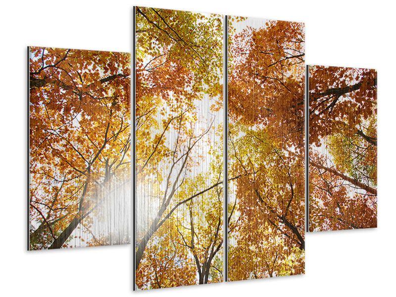 Metallic-Bild 4-teilig Herbstbäume
