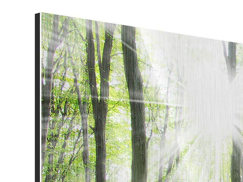 Metallic-Bild 4-teilig Magisches Licht in den Bäumen