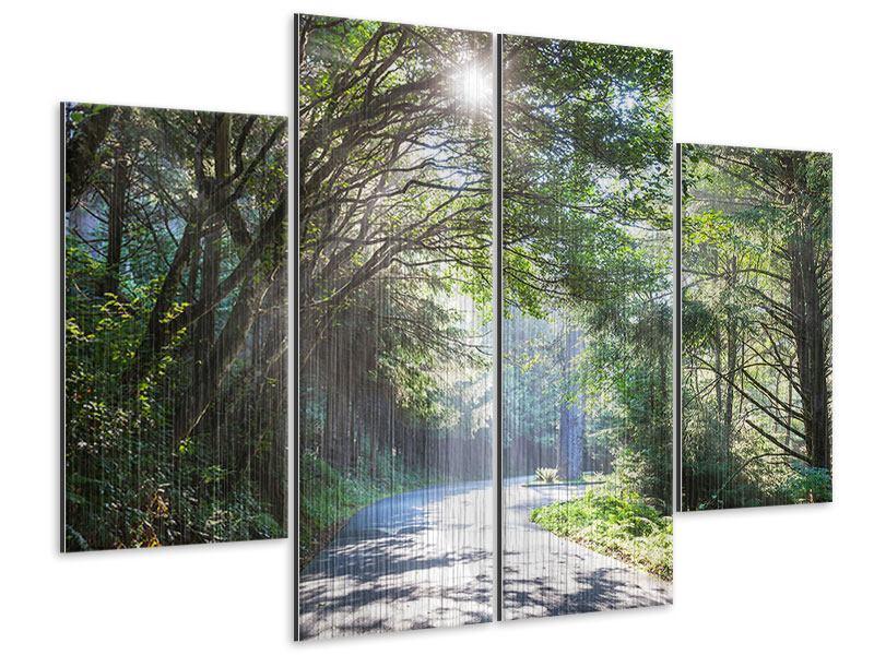Metallic-Bild 4-teilig Sonniger Waldweg