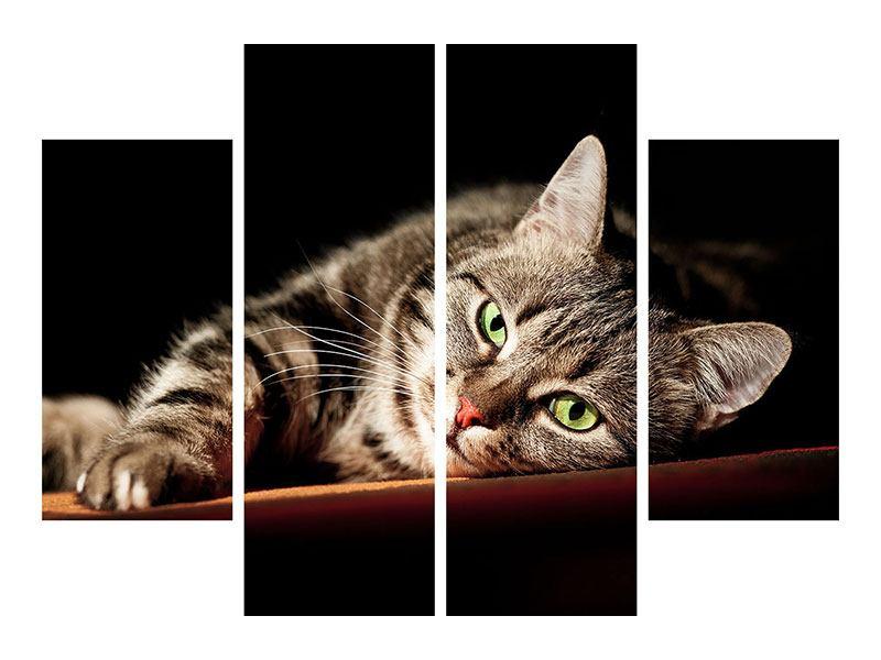 Metallic-Bild 4-teilig Entspannte Katze
