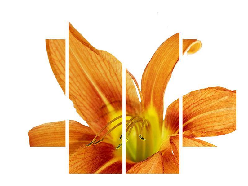 Metallic-Bild 4-teilig Die Tiger-Lilie