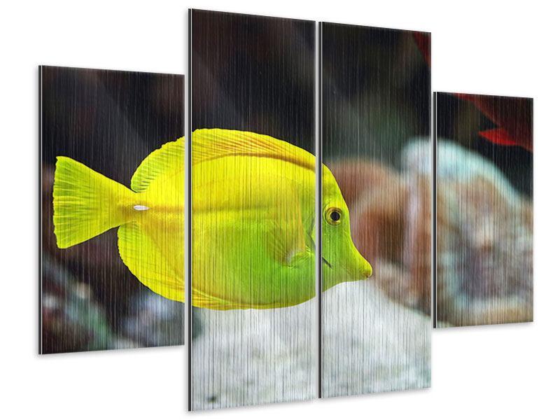 Metallic-Bild 4-teilig Segelflossendoktorfisch
